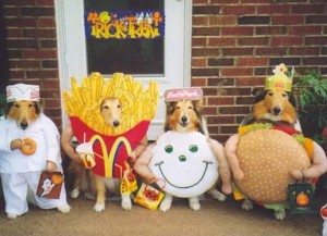 costume dogs in fast food costumes